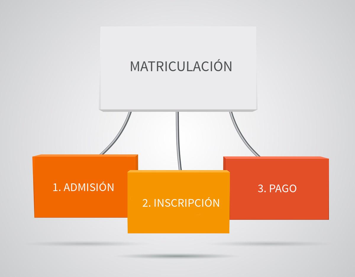 Pasos-Matriculación